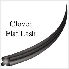 クローバーフラットラッシュ